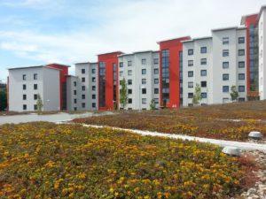 wivena GmbH Naturelemente Dachbegrünung